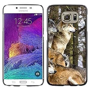 Be Good Phone Accessory // Dura Cáscara cubierta Protectora Caso Carcasa Funda de Protección para Samsung Galaxy S6 SM-G920 // Wolf Pack Winter Canine Animals Nature