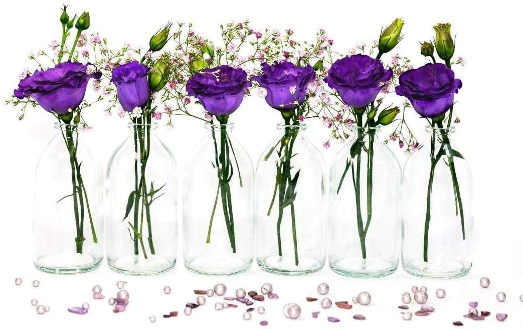 Casavetro - Mini jarrón de Cristal, Botella pequeña, jarrón de Mesa, Juego de Botellas Decorativas, jarrones, decoración de Boda, 12 Stück