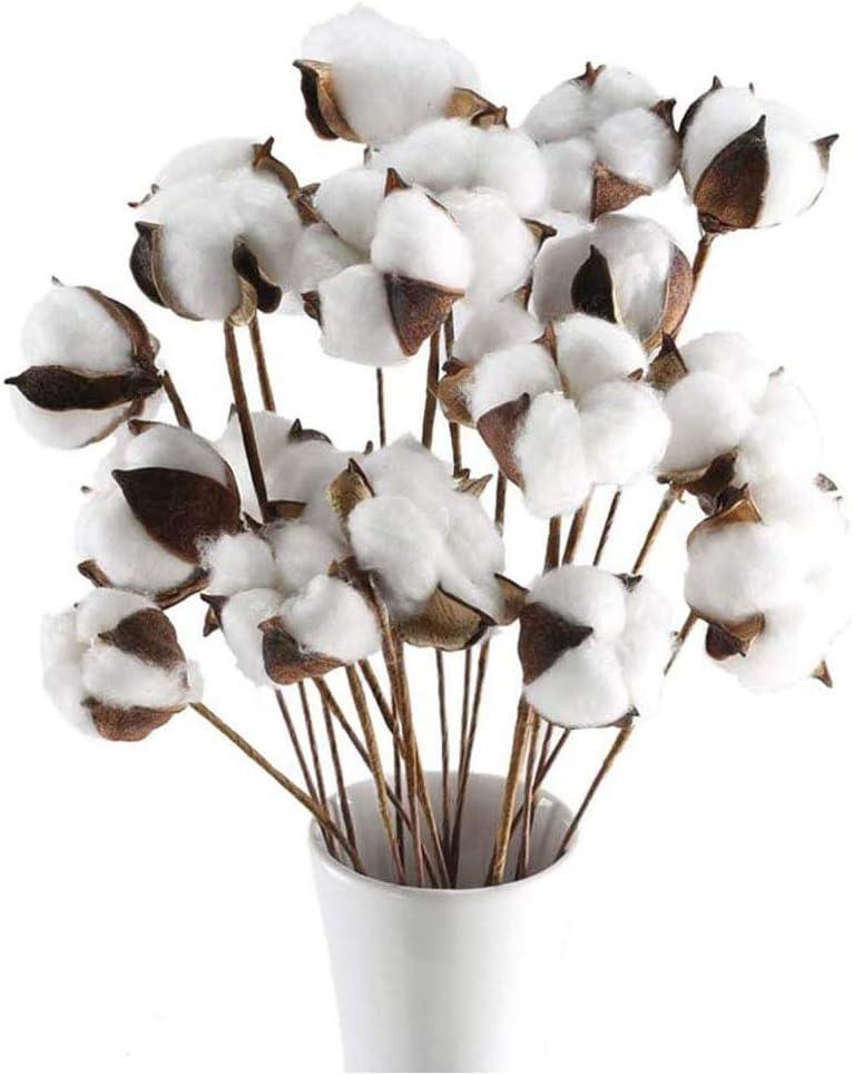 20 Bunches Natural Dried Cotton Stem Artificial Cotton Flower Farmhouse Cotton Blossom Stems for Farmhouse Wedding Decor Floral Arrangement