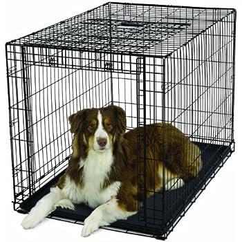Amazon Com Amazonbasics Single Door Folding Metal Dog