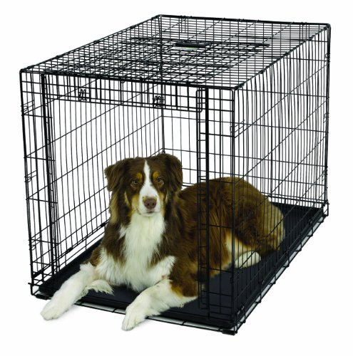 MidWest Homes for Pets Ovation Single Door Dog Crate, 42-Inc