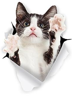 Winston & Bear 3D Cat Stickers - 2 Pack - Black & White Tuxedo Cat Decals