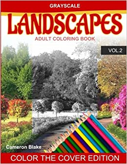 Amazon Com Grayscale Landscapes Adult Coloring Book Vol 2