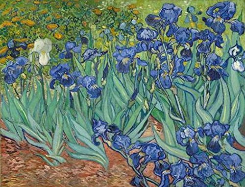 Wieco Art - Irises Modern Stretched and Framed Floral Giclee Canvas Print By Van Gogh Famous Flowers Oil Paintings Reproduction Artwork Pictures on Canvas Wall Art for Bedroom Home (Giclee Framed)