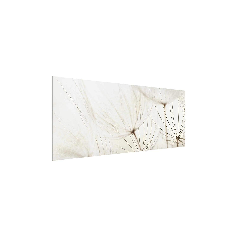 PPS. Imaging Wandbild Wandbild   Wandbild Glasbild, Motiv Motiv Motiv sanftes Gräser Panorama, breiter Druck auf Glas, Glasbild, Wandbild, Glasbild, Glasbild, Wandbild, Maße (H x B)  30 x 80 cm 93aa44