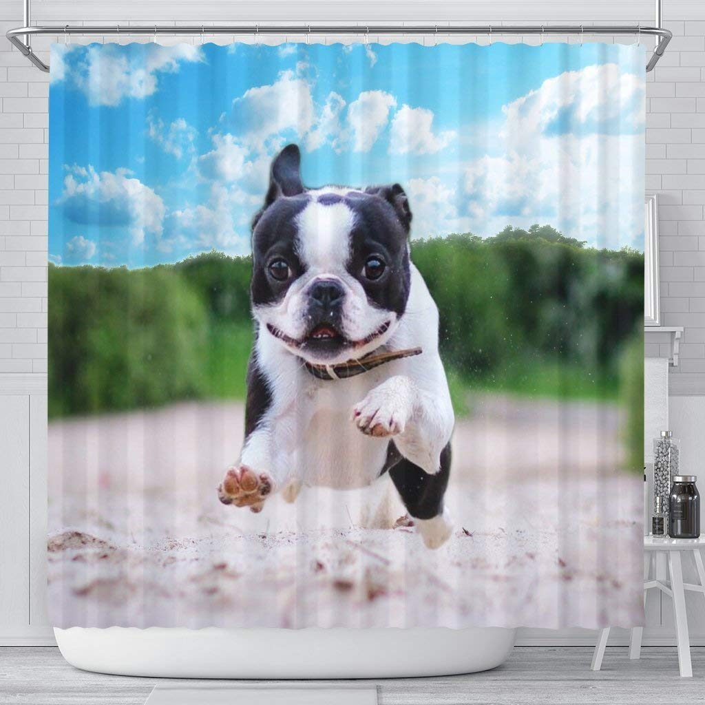Mamazz Awesome Boston Terrier Print Shower Curtains by Mamazz