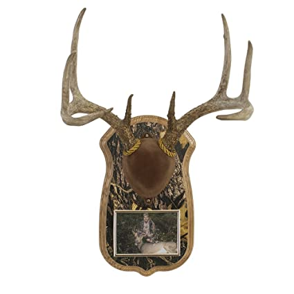 cfcc816da Amazon.com: Walnut Hollow Country Deluxe Antler Display Kit with Photo  Frame, Oak with Camo: Home & Kitchen