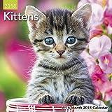 2018 Kittens Mini Calendar (Day Dream)