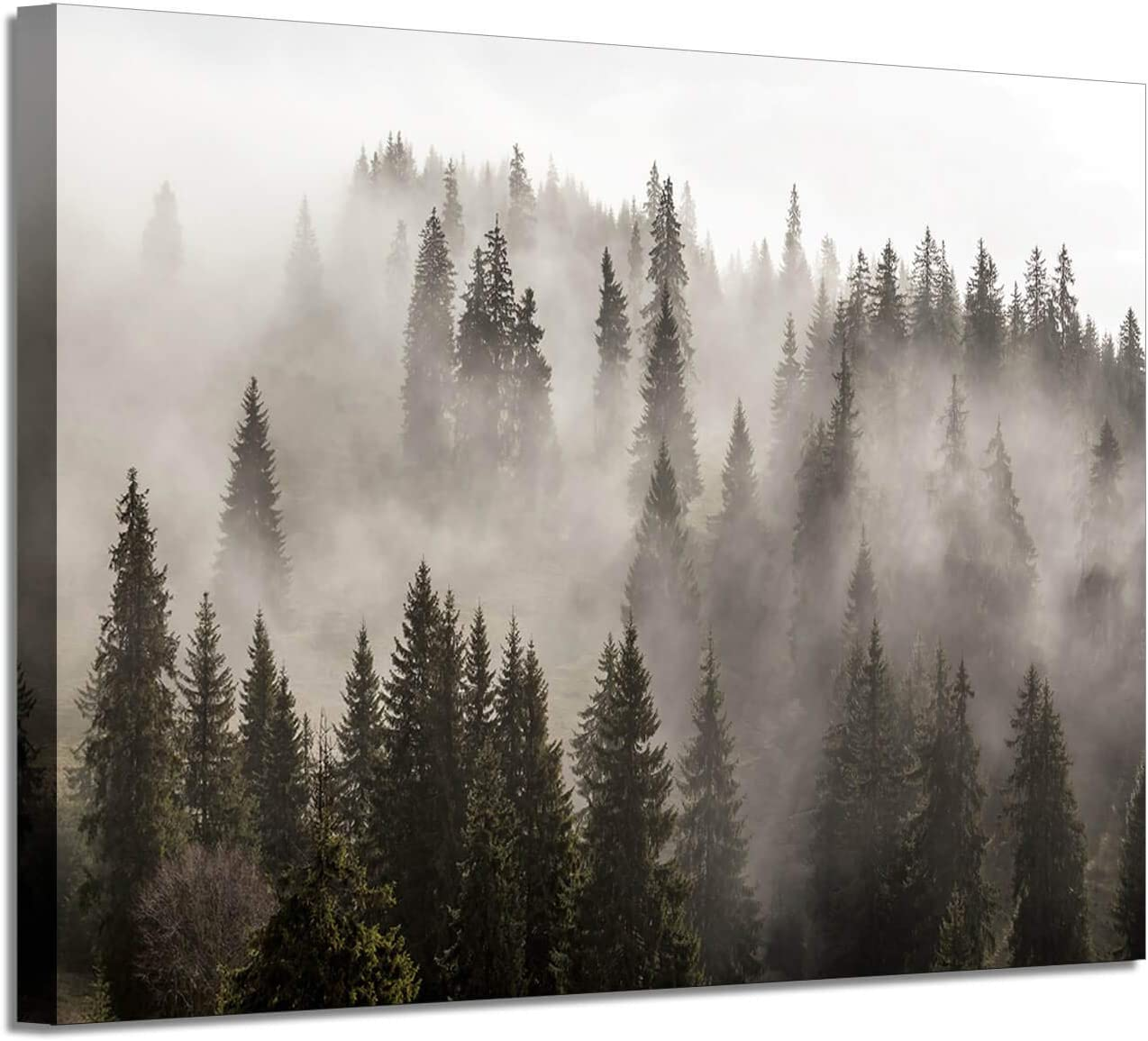 Foggy Forest Picture Wall Art: Landscape Artwork Photographic Print on Canvas for Office (45'' x 30'' x 1 Panel)