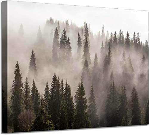 Foggy Forest Picture Wall Art: Landscape Artwork Photographic Print on Canva