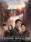 Affiche Cinéma Originale Petit Format - Le Labyrinthe : La Terre Brûlée (format 40 x 53 cm pliée)