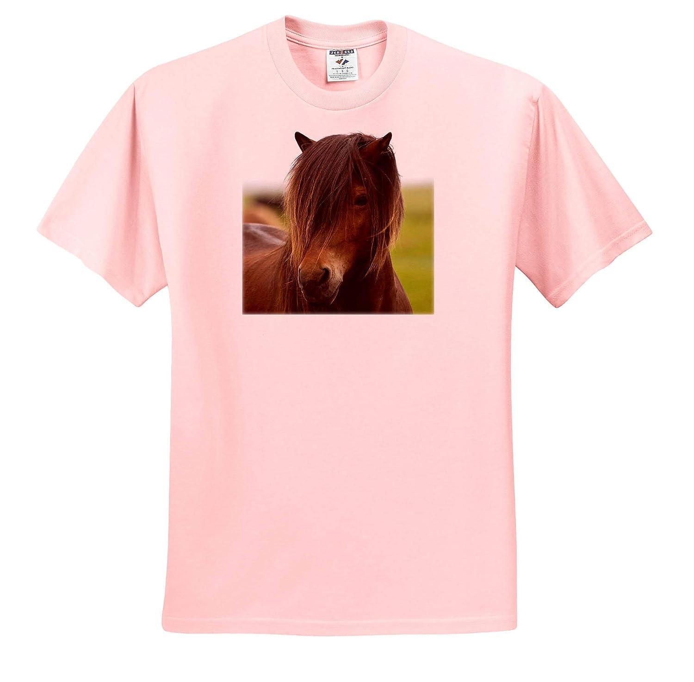 ts/_313669 Icelandic Horse Iceland 3dRose Danita Delimont Horses Adult T-Shirt XL