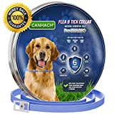 Dog Flea Treatment Collar - Flea and Tick Collar for Dogs 6 MONTHS Protection - Best Natural Pet Protection, Stops Bites, Itching, Kill Insects, Larvae, Eggs and fleas - Hypoallergenic, Waterproof, & Fully Adjustable