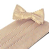 Collared Greens Signature Series Gold Cummerbund and Bow Tie Set