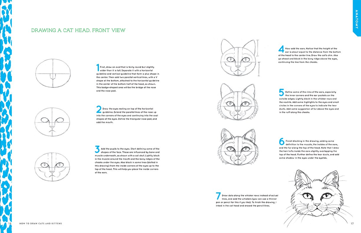 How to Draw Cats and Kittens: A Complete Guide for Beginners: J.C. ...