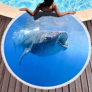 Capsceoll Round Beach Towels for Adults, Whale Sharks Swimming in Blue Waters Mexico Mujeres 60 X 60 Inch Large Beach Towel for Children,Ladies and Boys