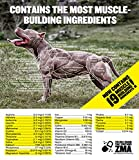 Bully Max The Ultimate Canine Supplement 60 Tablets