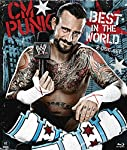 Cover Image for 'WWE: CM Punk - Best in the World'