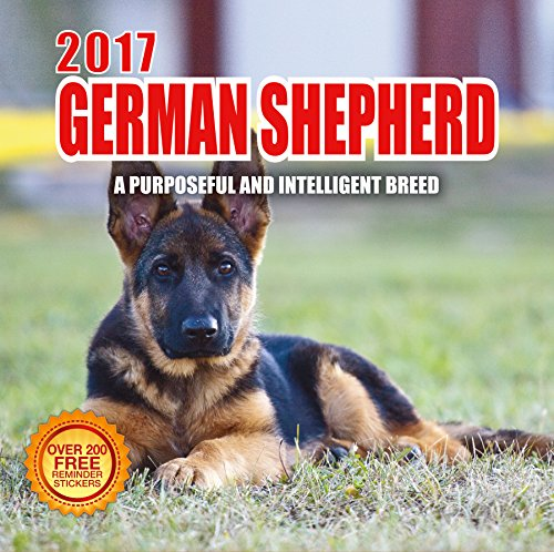 2017 German Shepherd Calendar- 12 x 12 Wall Calendar - 210 Free Reminder Stickers