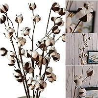 Flores artificiales secas de algodón DIY flores artificiales