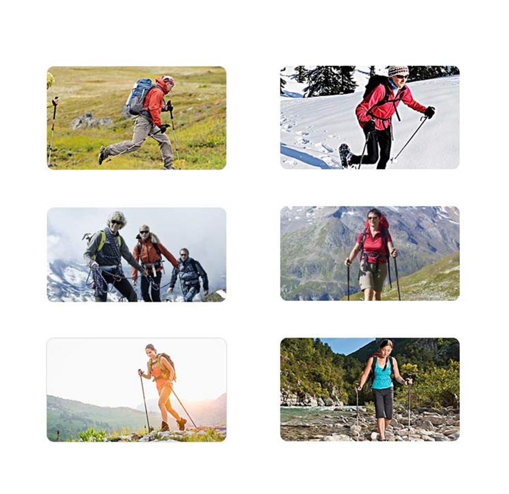 Alpenstock Trekkingstock Trekkingstock Outdoor Trekkingstock Alpenstock Außenschloß ultraleichter einziehbarer Gehstock (63-135cm) d0e710