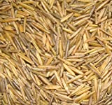 BINESHII GHOST WILD RICE, THE RAREST AND FINEST WILD RICE IN THE WORLD!