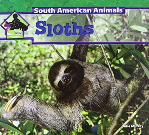 Sloths (South American Animals) -