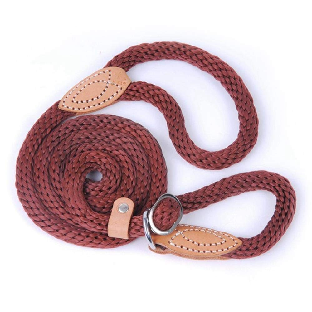 WINNER POP Durable Nylon Dog Training Leash for Running, Walking Or Hiking, Suitable for Medium and Large Dogs, Brown,L