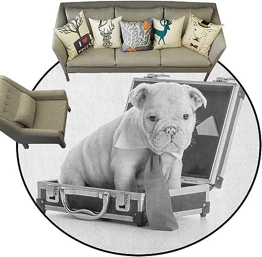 Alfombra de Suelo con diseño de Bulldog inglés con diseño de Cachorro Sentado Dentro de un maletín, ilustración de Escala de Grises D48 para Sala de Estar: Amazon.es: Hogar
