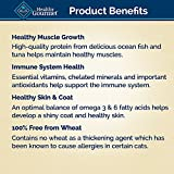 BLUE Healthy Gourmet Adult Pate Ocean Fish & Tuna