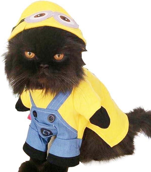Super Cute Dogs Cats Dress Up – Disfraz Funny de Minions: Amazon ...