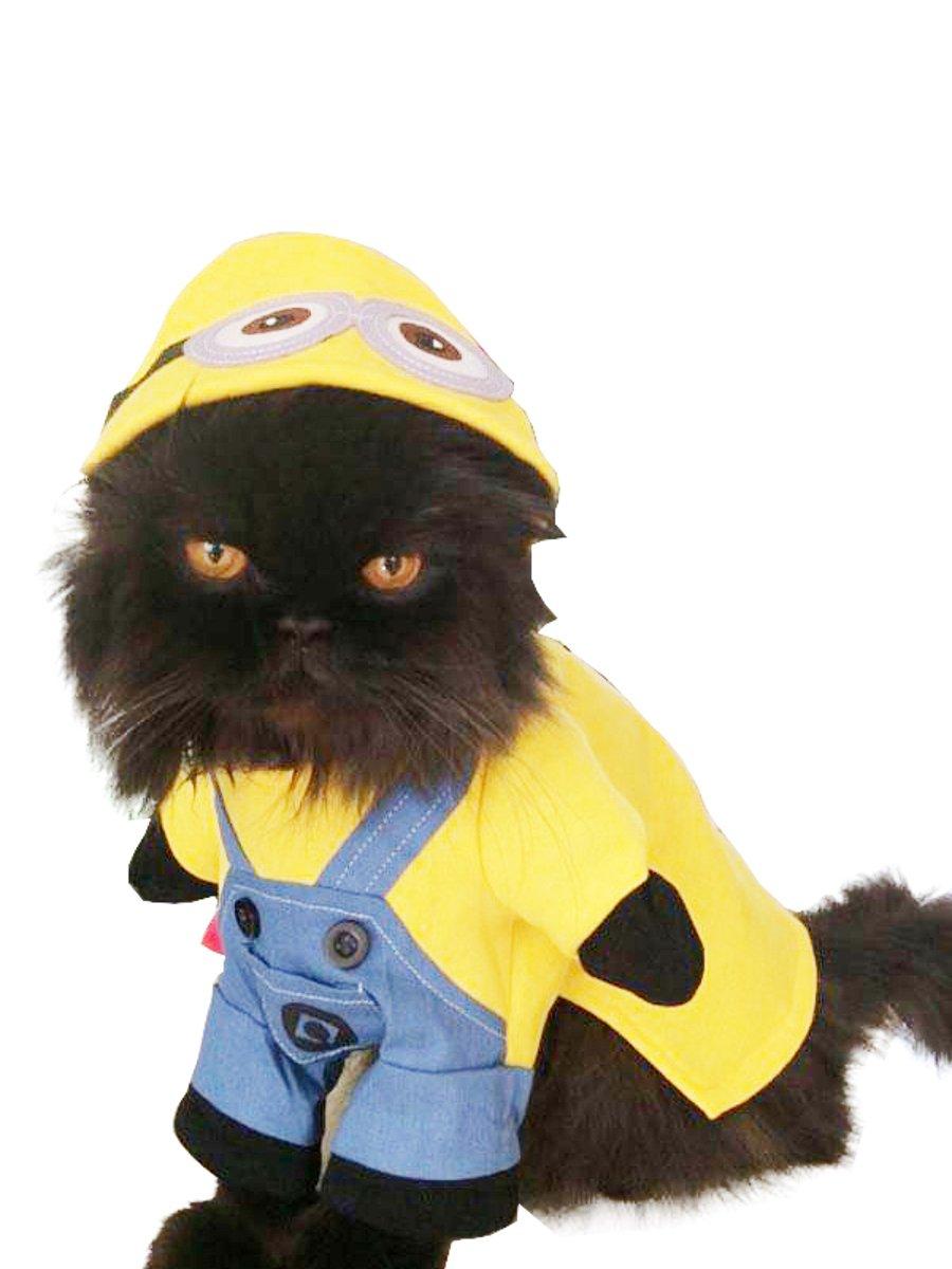 Super sü ß e Hunde Katzen Kleid bis Halloween Funny Kostü m Minions Glamour Girlz