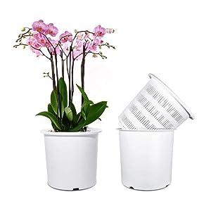 Mkono 7 Inch Plastic Orchid