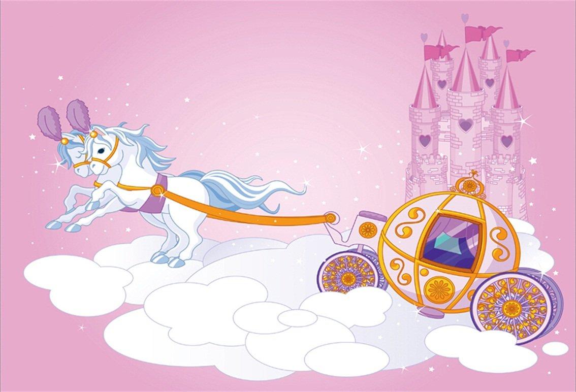 特別セーフ aofoto Artistic 7 x 5ft Cartoon Clouds Pumpkin Carriage背景Fairy x Tale Castle子誕生日パーティー写真背景プリンセスDreamy Clouds Photo Studio Props Girl Kid Artistic Portraitビニール壁紙 B07C6XTVP8, LOVELY DAY:aee95c4c --- by.specpricep.ru