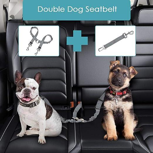 Lukovee Doppelter Hunde Sicherheitsgurt Mit Leine Zweifacher Abnehmbarer Haustier Auto Sicherheitsgurt Und Haustier Leine Für Zwei Hunde Sicherheit Verstellbar Elastisch Reflektierender Streifen Haustier
