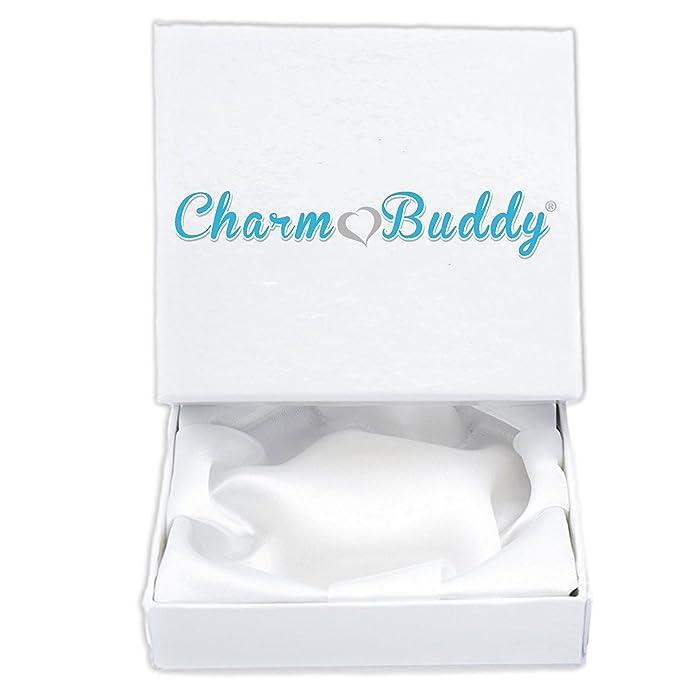 91fe8e5e5 Amazon.com: Charm Buddy Aunt Auntie Aunty Pandora Style Bracelet With Charms  Beads Gift Box: Jewelry