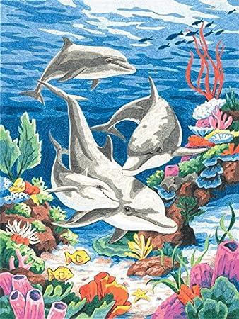 Dimensions Paintsworks Malen Nach Zahlen Inkl Buntstifte Motiv Delfine Im Meer