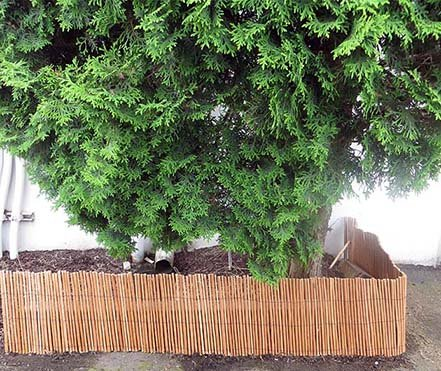 Willow Border - Master Garden Products No Bark Carbonized Willow Border Fence, 1 by 8-Feet