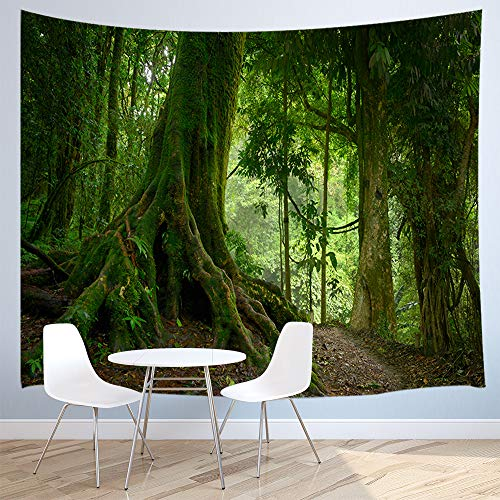 JAWO Forest Tapestries, Dark Forest Scenery with Sunbeams Woodland Landscape Wall Hanging Tapestry for Bedroom Living Room Dorm Blanket Wall Decor 3D Print Art Tapestry 71x60 inches