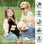 ProHomer-Collare-per-Pulci-per-Cani-Gatto-Uccidere-Zecche-e-Pulce-in-Modo-Efficace-per-Cani-di-Taglia-Piccola