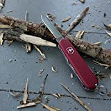 Victorinox-Swiss-Army-Pocket-Knife