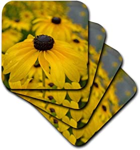 3dRose cst_36167_2 Black Eyed Susan Garden of Flowers-Floral Photography-Soft Coasters, Set of 8