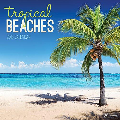 2018 Tropical Beaches Wall Calendar PDF