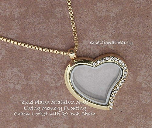 EART Stainless Steel Heart Living Memory Floating Charm Pendant Locket Chain Necklace -