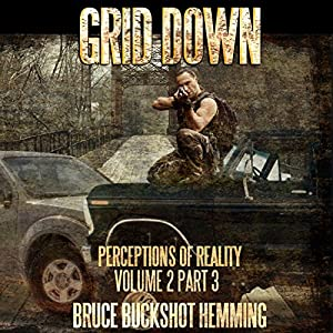 Grid Down: Perceptions of Reality Audiobook