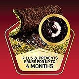 Scotts GrubEx1 Season Long Grub Killer, 14.35