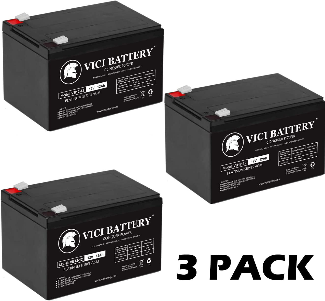 Version 2 Battery Set by UPSBatteryCenter Set of 2 6V 12Ah F2 Compatible Replacement for Tripp Lite TE Series 300VA TE300