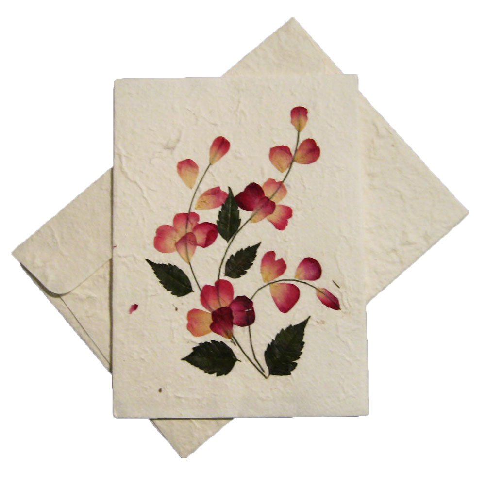 Amazon Handmade Pressed Flower Greeting Card Designs Make