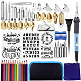 Vastar 48pcs Wood Burning Kit, Soldering Iron Tool, Temperature Adjustable With Soldering Pyrography Wood burning Pen + Embossing/Carving/Soldering Tips, 5 Stencils,12 Pencils,Stand & Sharpener (Blue)