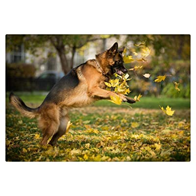 Puzzle 1000 Piece for Adult German Shepherd Playing with Leaves Art Paintings: Toys & Games